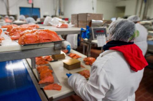 produkcja pakowanie ryb lososia 2019